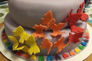 Rainbow-Butterflies